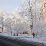 Барнаул зимние зарисовки