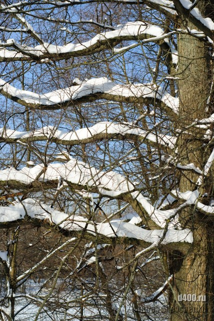 горки лененские зимние фото