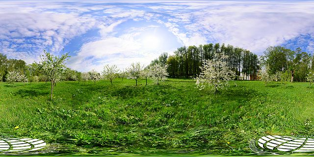 фото панорама цветущий яблоневый сад