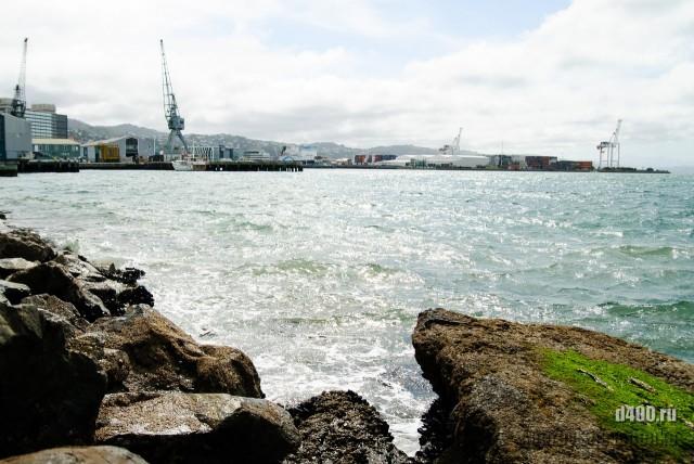 New Zealand trip. Wellington (35)