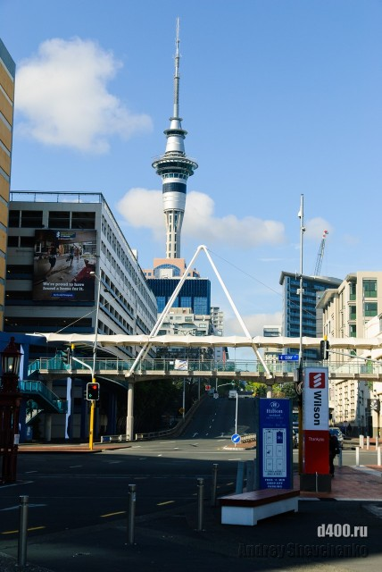 Auckland coast to coast walkway (7)