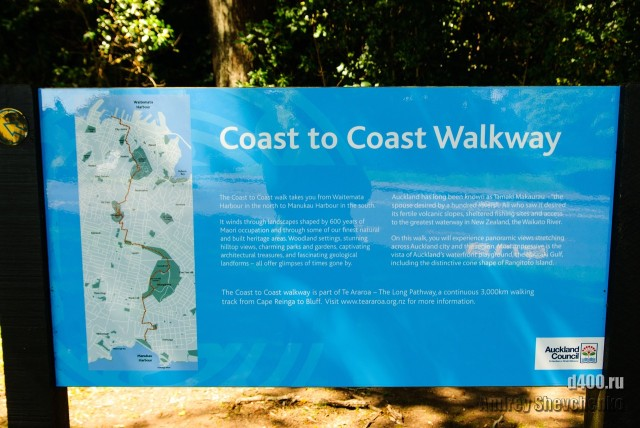 Auckland coast to coast walkway (75)